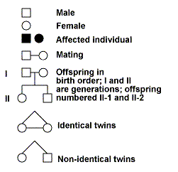 Pedigree Analysis in Human Genetics